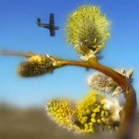 Весна... :: Удивительное Рядом