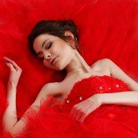 Спящая красавица :: Виктория Бенедищук