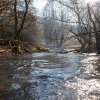 Горная река :: Ignis Avis