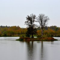Остров на реке :: Александр