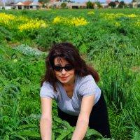 мошав нир баним . ферма артишоков :: ALEX KHAZAN