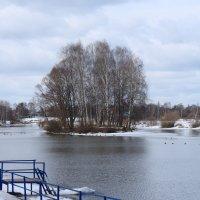 Весенний пейзаж :: Екатерина Василькова