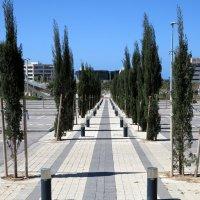 Пешеходная алея. :: Валерьян