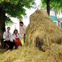 сельские мотивы :: elena manas