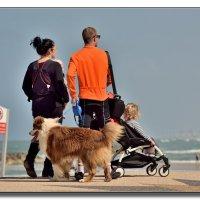 На воскресной прогулке всей семьей. :: Leonid Korenfeld