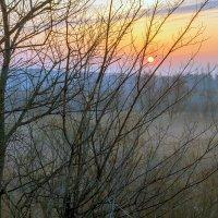 Солнце взошло.. :: Юрий Стародубцев