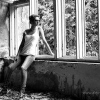 Окна :: Александр Сомов