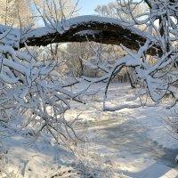 Во власти снега оказался март :: Милешкин Владимир Алексеевич