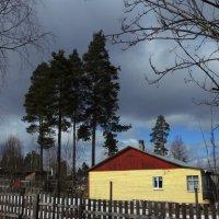 Желтый дом :: Мария Кондрашова