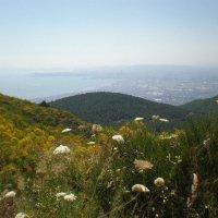 Неаполитанский залив :: Алёна Савина