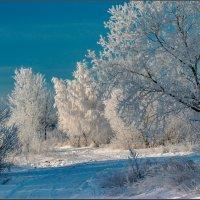 Зимний этюд :: Александр Лихачёв