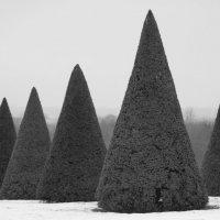 Версаль зимой 2 :: Александр Глазков