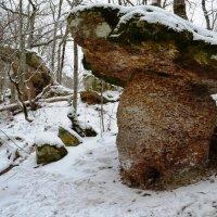 Каменные грибы п.Новый. :: Береславская Елена