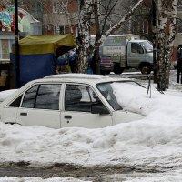А  вот  и  весна  ................  как всегда - неожиданно.... :: Валерия  Полещикова