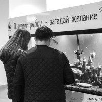 Вера в чудо :: Ольга Мансурова