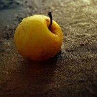 Яблоко на мокром песке. :: Аnatoly Polyakov