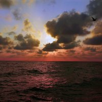 .... море... закат :: Евгений Р
