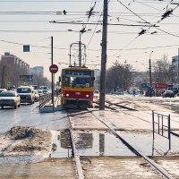 Трамвай на остановке :: Сергей Черепанов