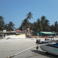 пляжи ГОА :: maikl falkon