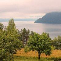 Август на Телецком озере :: И.В.К. ))