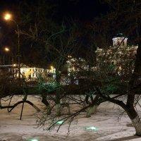 когда наступает ночь :: Олег Лукьянов