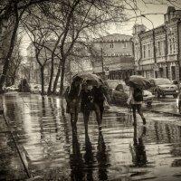 Три подруги под зонтом :: Сергей Шруба