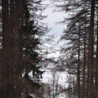 усадьба  Середникова (в парке) :: Августа