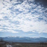 Весна в Грозном :: Daniel Woloschin