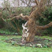 Индийская фигурка в частном саду :: Natalia Harries