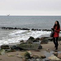 Девушка и суровая Балтика :: Анастасия Алёшина