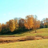 Осень в Михайловском. :: Нина