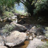 Каменная река. :: Андрей