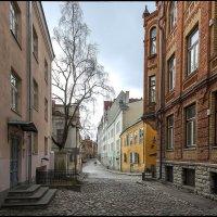 Старый Таллин... :: Jossif Braschinsky