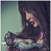 Кошки :: Sergey Lexin