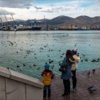 Девушки и чайки :: Марина