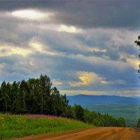 По дороге в Алатау :: Сергей Чиняев