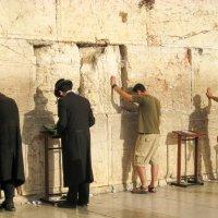 Израиль,Иерусалим.Стена Плача (мужская половина). :: Татьяна Калинкина