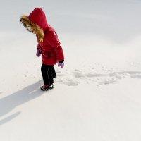 Северный полюс :: f_lorik