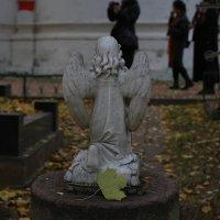 Осенний Ангел :: Михаил Зобов