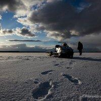 Планета Земля 3 :: Андрей Соловьёв