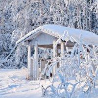 В царстве снежной королевы :: Sergey Ch
