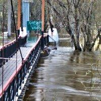Не ходите по мосту... :: Алла Рыженко