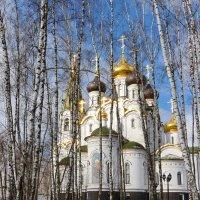 Церковь Александра Невского :: Леонид Иванчук