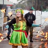 Проводили Зиму! :: Елизавета Ковылина