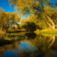 Река Тильзе :: Игорь Вишняков