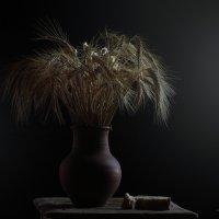 Пшеничные колосья... :: Аnatoly Polyakov