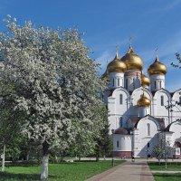 Весенняя зарисовка :: Николай Белавин