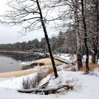 А под водою притаился лёд... :: Лесо-Вед (Баранов)