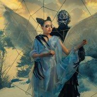 Паук и бабочка :: Ежъ Осипов