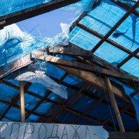 Съехала крыша :: Sofia Rakitskaia